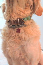 Pet Accessories, Personalized Bone Tag, Engraved Id Animal Lovers Gift - Viyoli Jewelry Designs