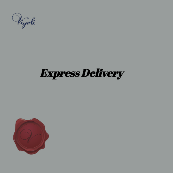 DHL Express Shipping Upgrade, Get your Order Faster - Viyoli Jewelry Designs