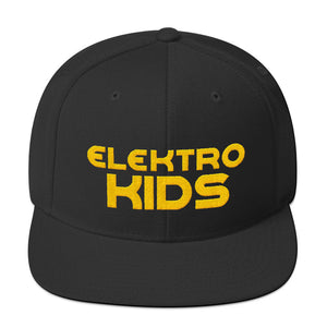Elektro Kids (Solid Gold) Embroidered Snapback All Black Hat (w/ lion icon back) - Elektro Kids Media