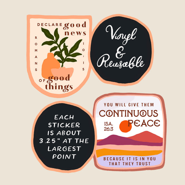10 Pack of Vinyl Stickers : Washable & Reusable