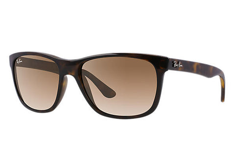 Ray Ban Tortoise/Brown Gradient