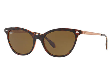 Ray Ban Tortoise/Brown