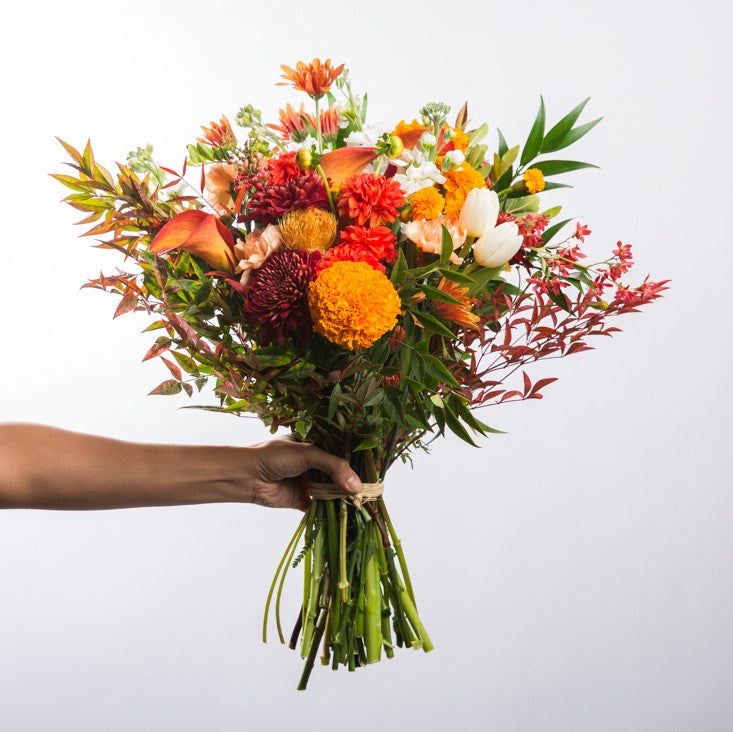The Daily Colorful Bouquet