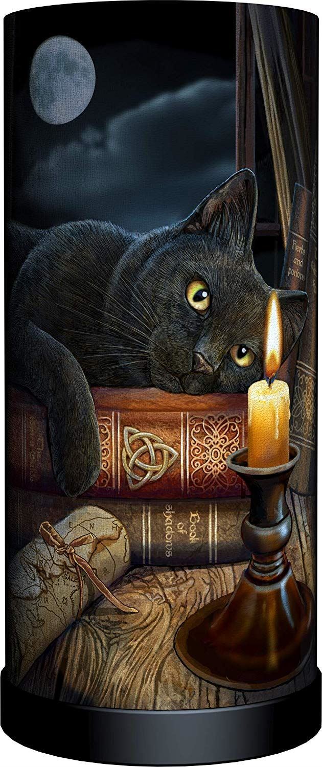 Nemesis Now Witching Hour Cat Witch Fantasy Bedside Lamp Desk Light by Lisa Parker