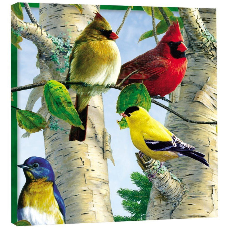 "Tree-Free Greetings 85507 11.25 x 11.25-Inch ""Favorite Songbirds"" Themed Bird Art EcoArt Home Decor Wall Plaque"