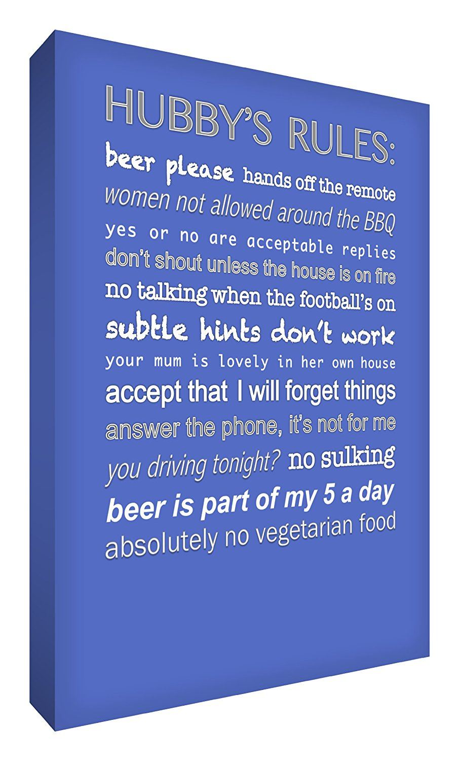 Feel Good Art 12 x 8-inch A4 Small Modern Typographic Hubby's Rules Thick Box Canvas, Blue