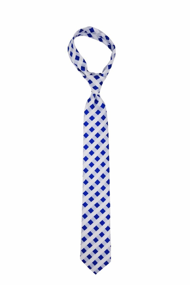 Blue and White Picnic Patterned Pre-tied Tie, Tie, GoTie