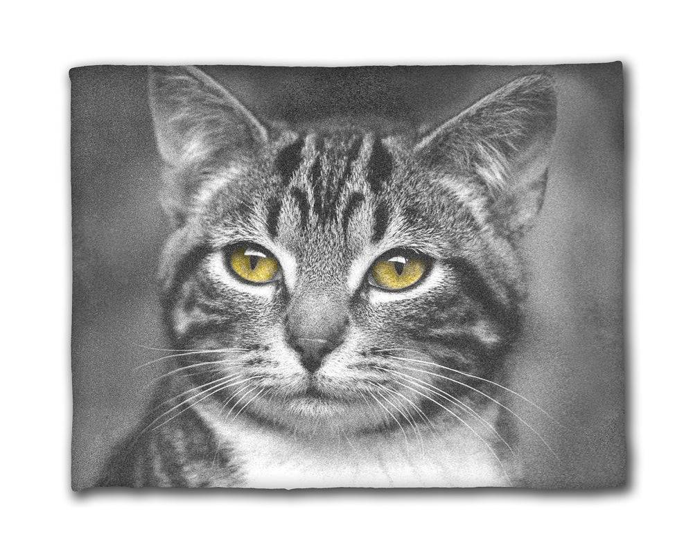 Cat with Yellow Eyes — 50x60 Fleece Blanket