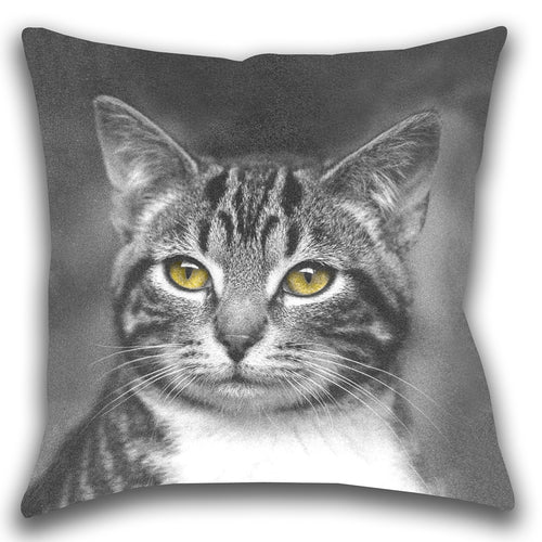 Cat with Yellow Eyes — Outdoor Pillow, UV Resistant
