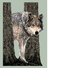 Northwoods Encounter (Wolf) Counted Cross Stitch Pattern PDF