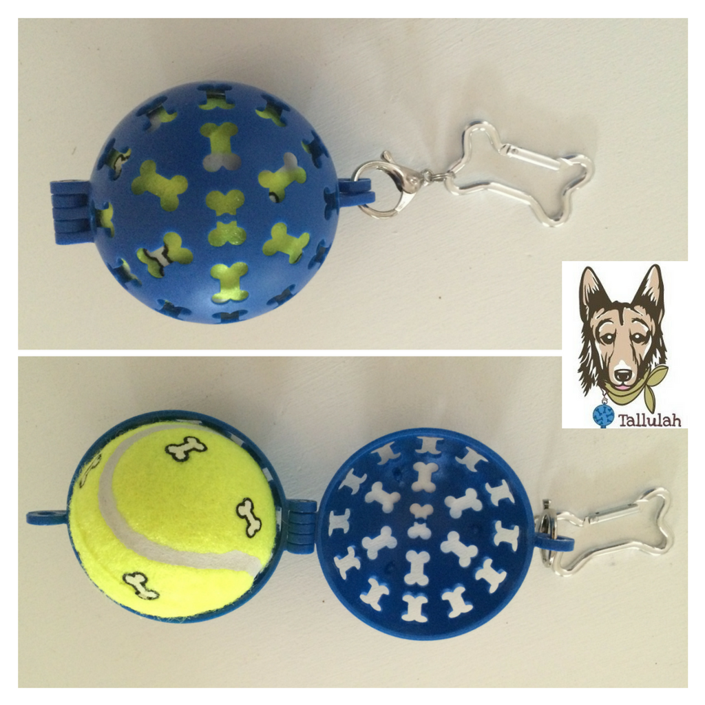 Have A Ball CarryAll™BLUE-Tallulah Brings Awareness to Brain Health