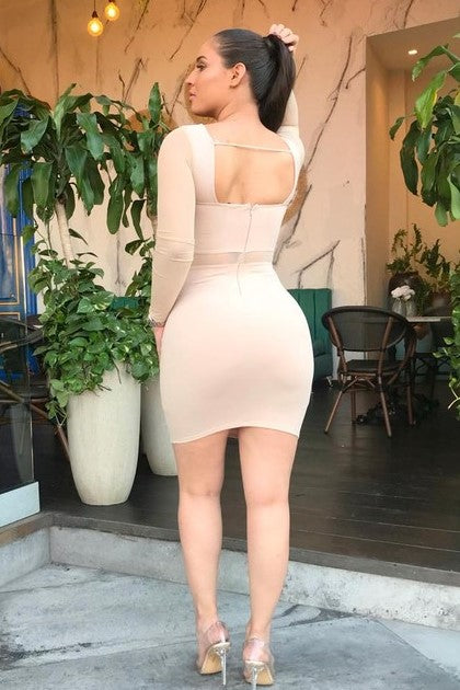 Beige Bodycon with Mesh Detail