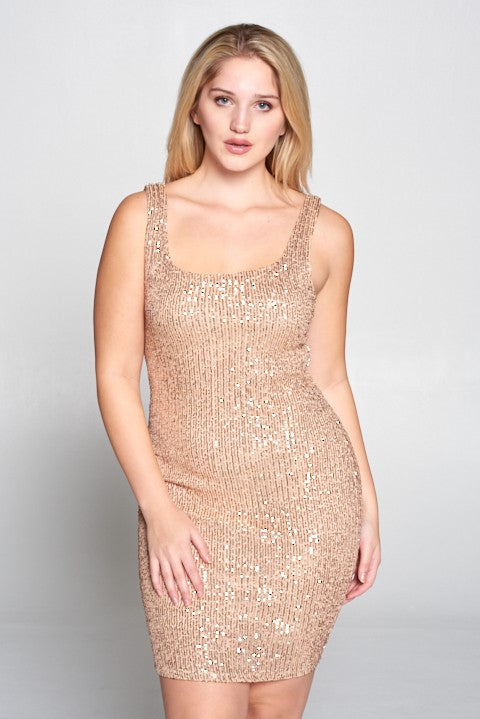 Mesh Sequin Sheath Dress