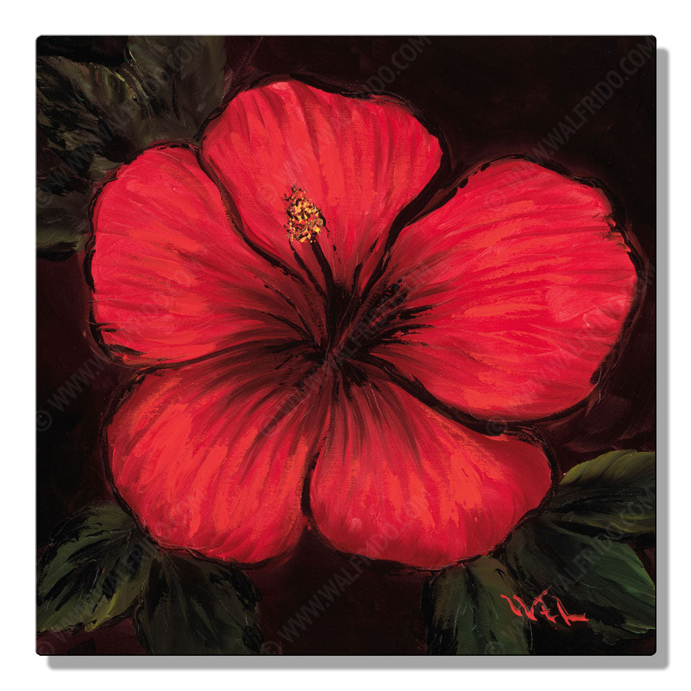 Red and Chocolate Hibiscus, Open Edition Metal Print by Tropical Hawaii Artist Walfrido