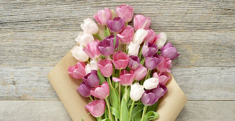 tulips, bouquet, flower