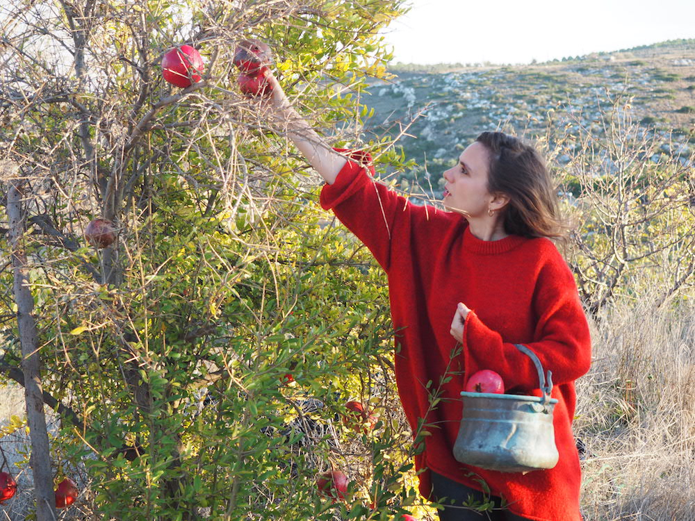 Darwins Botanicals Founder Tugay by the pomegranate tree