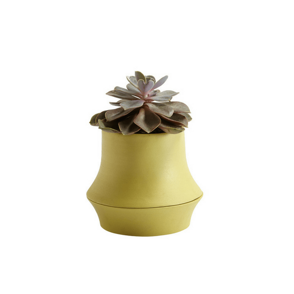 Volver Vase - Narrow Short - Yellow