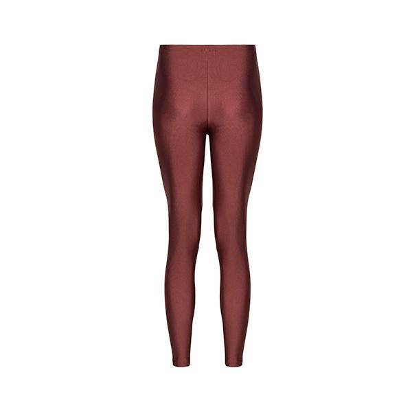 Alexandra Shiny Legging | Cinnamon Clothing Anais & Margaux