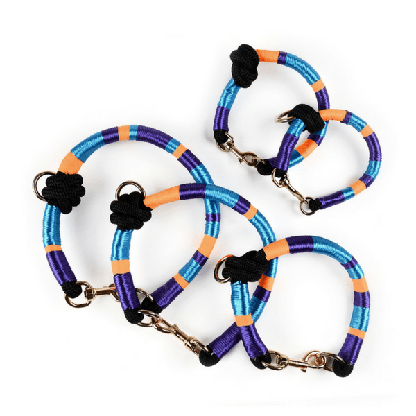 multicolored stylish Dog Collar | Midnight - hippist.co.uk