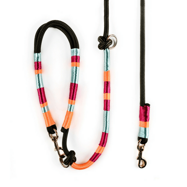 blue maroon orange Dog Leash | Dulcinea - hippist.co.uk