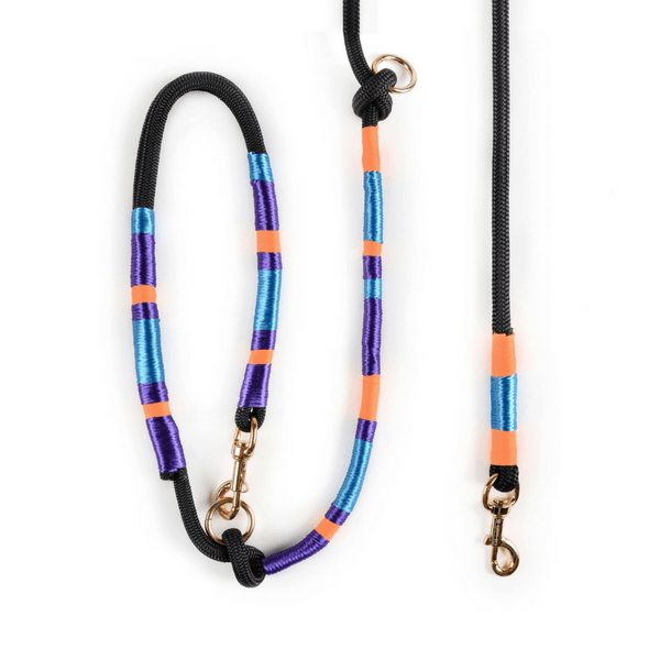 blue purple orange Dog Leash | Midnight - hippist.co.uk