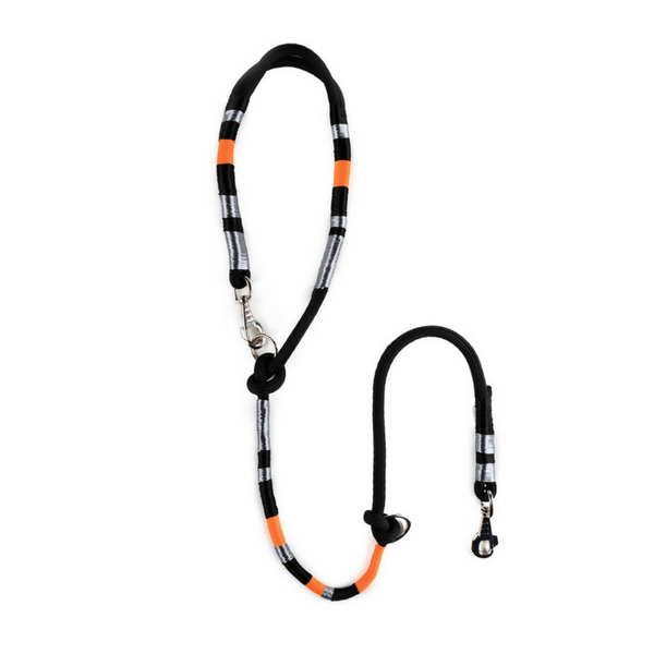 fashionable Dog Leash | Odin - hippist.co.uk