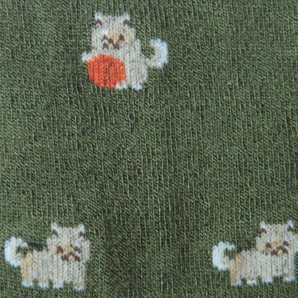 Fundaze branded green bamboo socks with Pomeranian pattern at hippist.co.uk