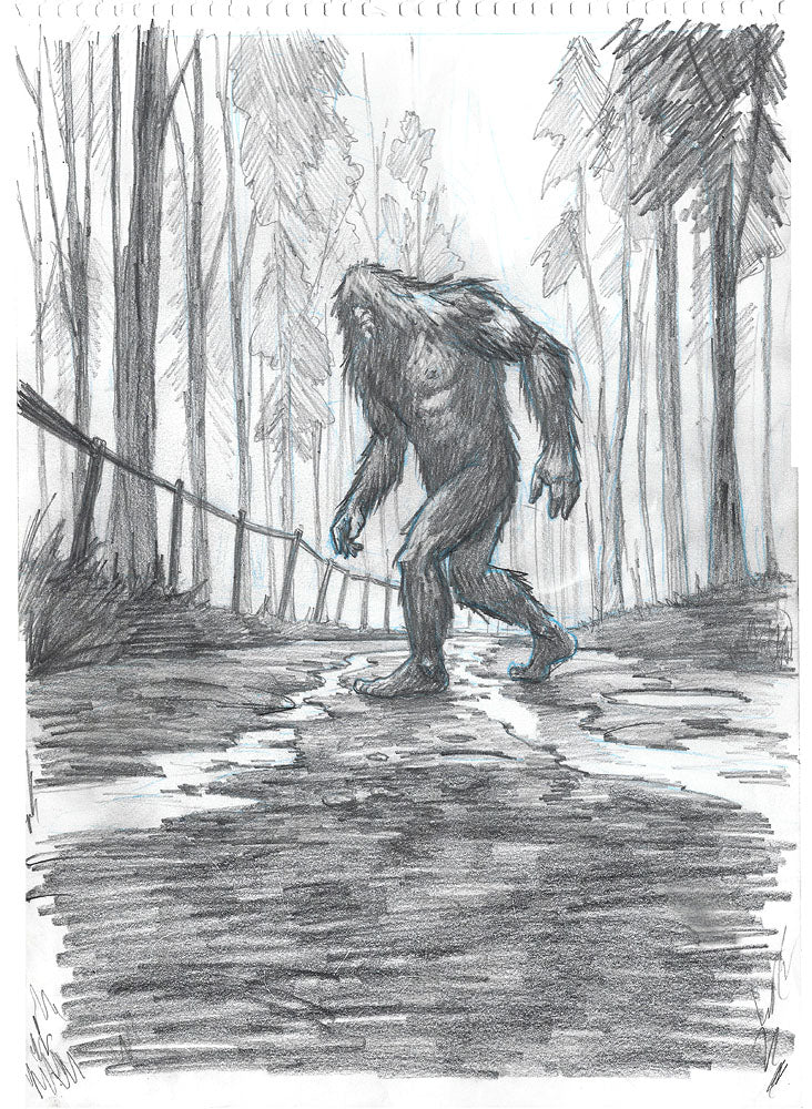 Beyond Boggy Creek.  Original Pencil Drawing