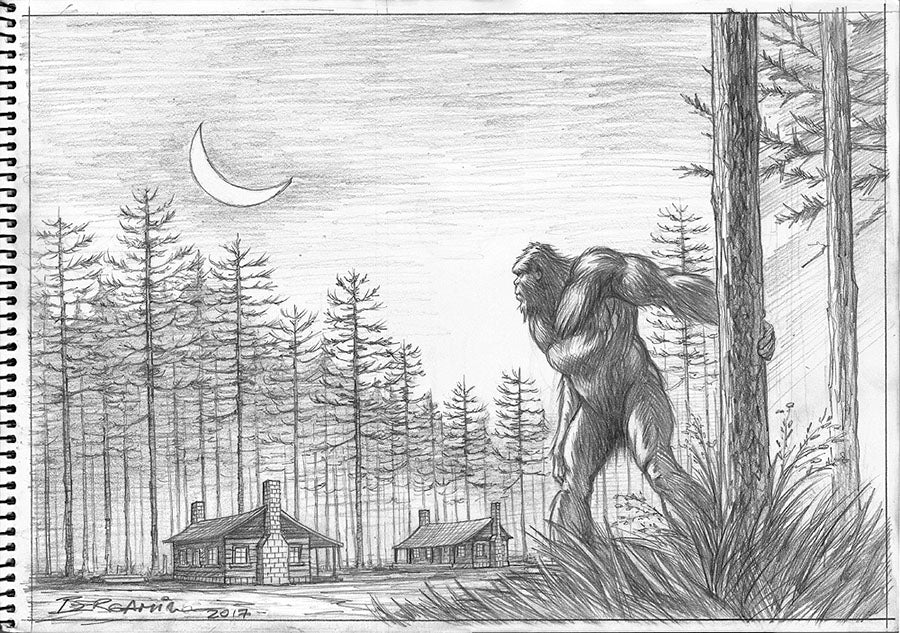 South-East Texas Bigfoot. Original Drawing