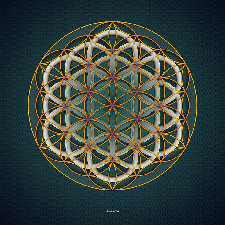 Sacred Geometry: Flower of Life