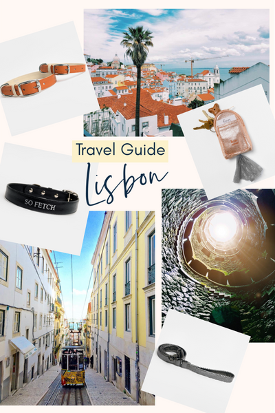 Travel Guide: Lisbon