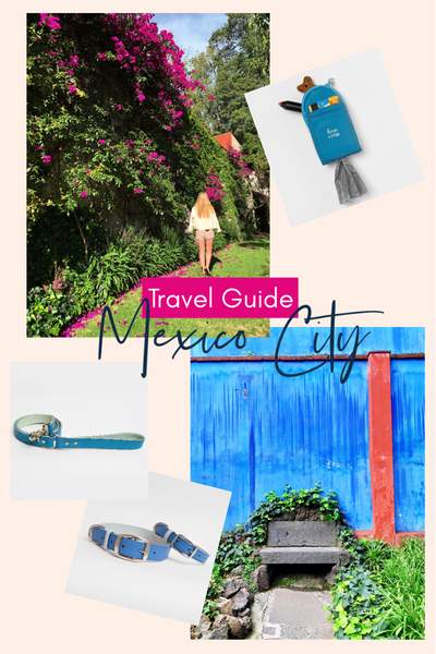 Travel Guide: Mexico City