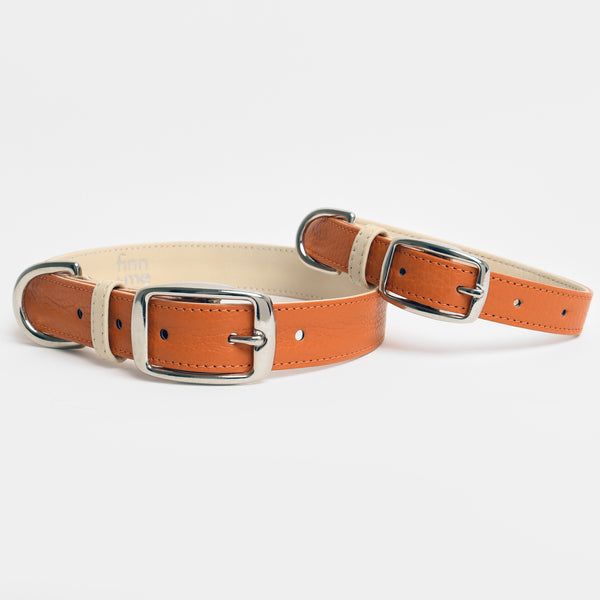 The Finley Collar in Burnt Orange