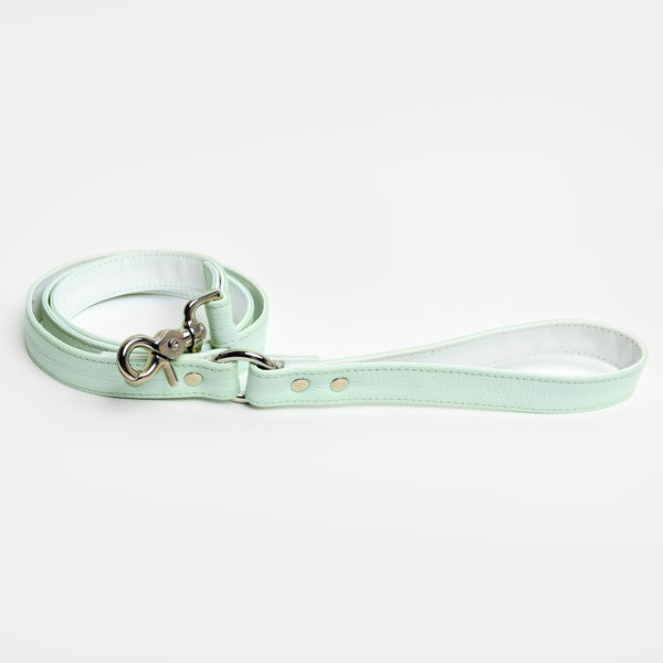 The Raleigh Leash in Mint Matcha