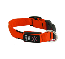 nite_dawg_collar_Orange_S7181K4I7X5F.png