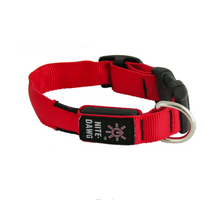 nite_dawg_collar_red_S718236KZSY2.png