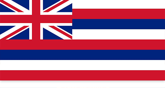 Hawaii State Flag Sticker