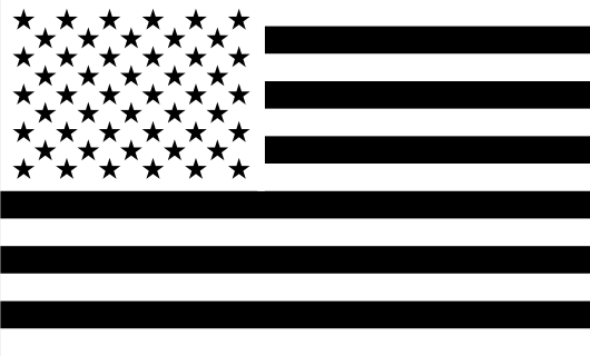 American Flag Sticker<br>(White & Black) FWD