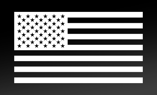 American Flag Decal<br>(White) FWD