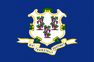 Connecticut State Flag Sticker