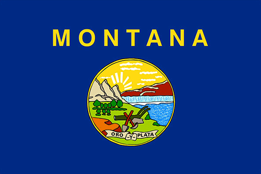 Montana State Flag Sticker