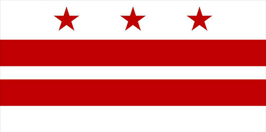 Washington DC Flag Sticker