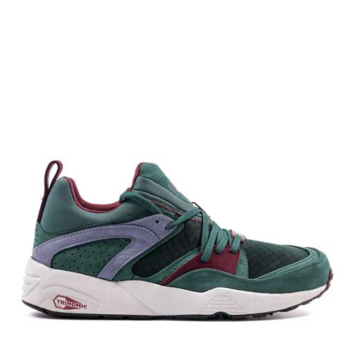 BLAZE OF GLORY TRINOMIC