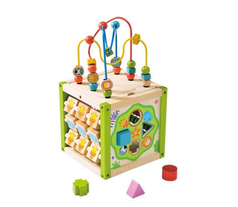 EverEarth - My First Multii-Play Activity Cube