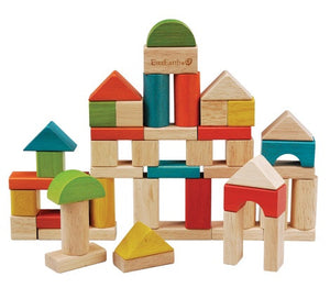 EverEarth - Building Blocks 50pcs