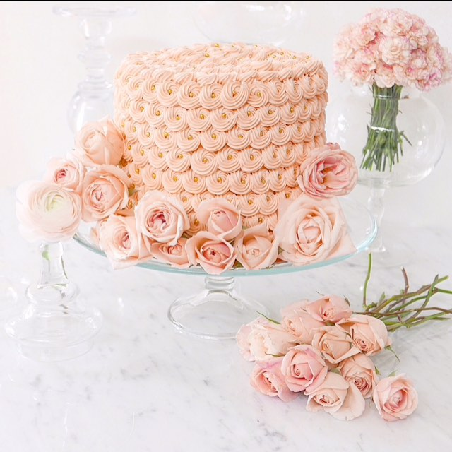 Solid Light Pink Cake