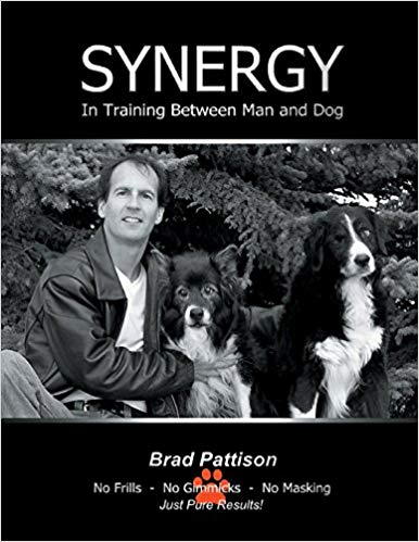 Synergy in Training Between Man and Dog by Brad Pattison