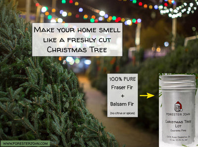 Image of Christmas tree essential oil by Forester John. A tree lot with fraser fir.