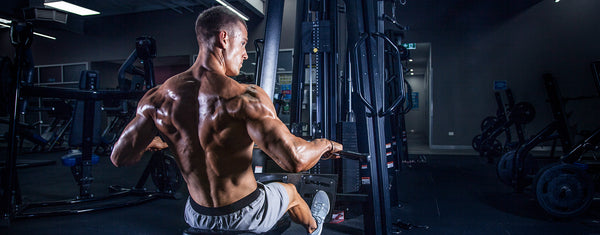 Acetyl L Carnitine - ALCAR increases workout performance