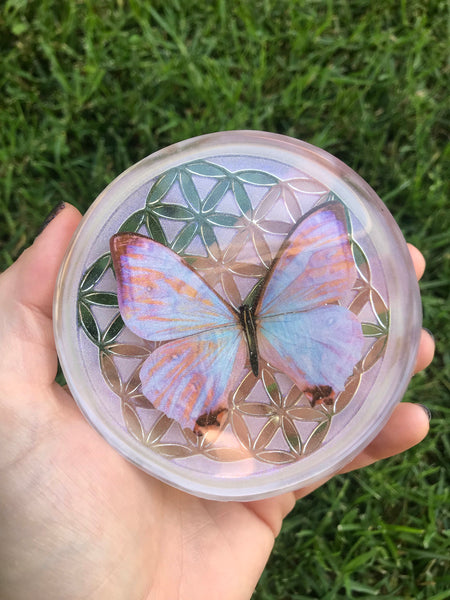 Resin Art | Geometric Circle | Butterfly | Cruelty Free
